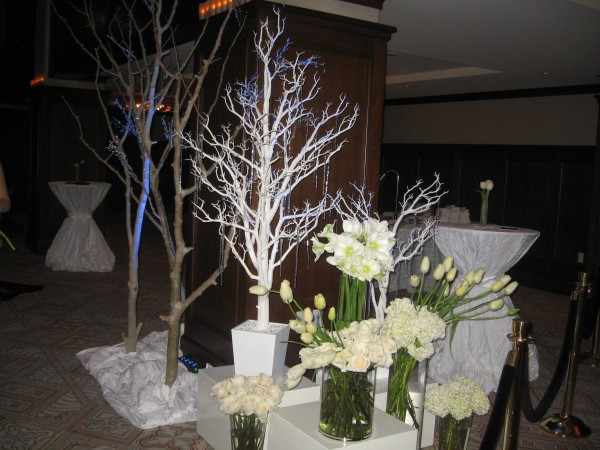 The Pre-Function area welcomed guests into the Fire & Ice theme with iceicles and winter trees